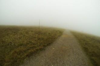 Das Gipfelplateau des Feldberg im Nebel