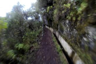 An den Levadas entlang