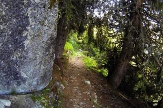 Flowiger Downhill nach Realp