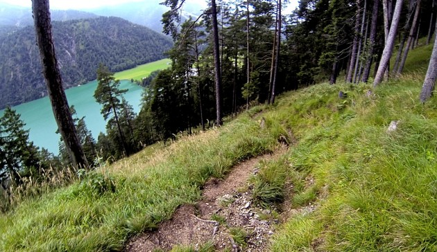Downhill nach Achenkirch