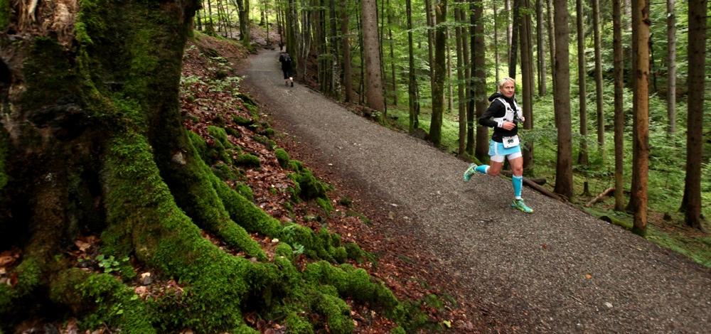 Downhill im Wald