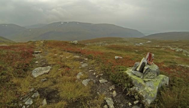 Trail durch das Hochmoor
