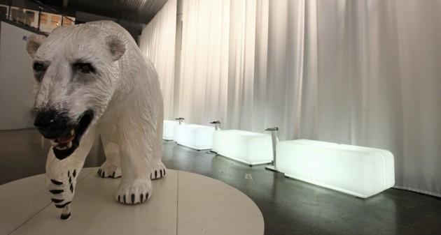 Polaria Museum Eisbär
