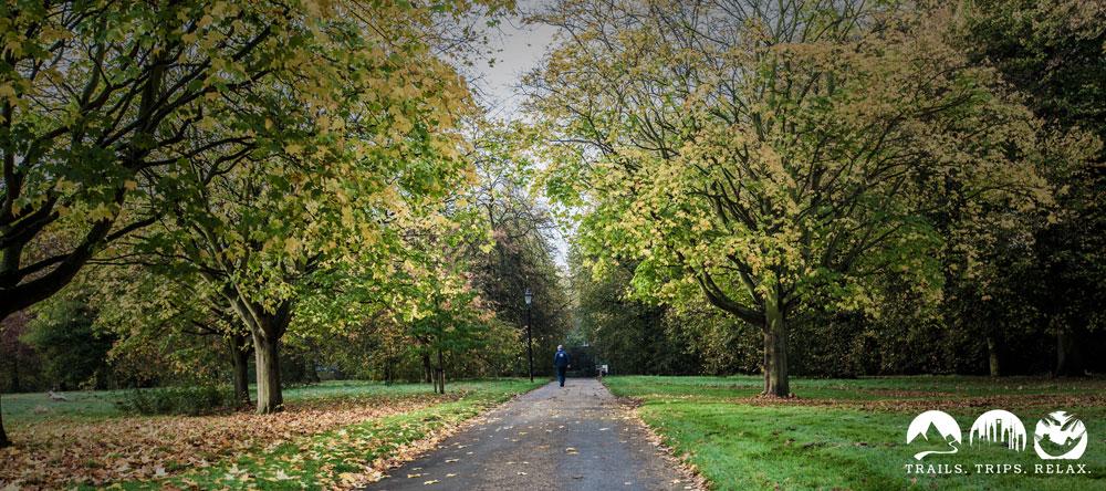 Allee im Hyde Park