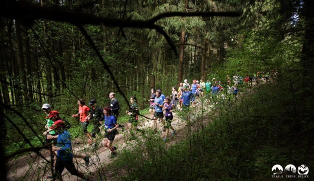 Laufend durch den Wald am Hohenstoffeln