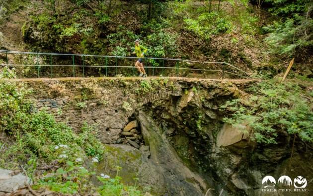 Madeira Brigde Running