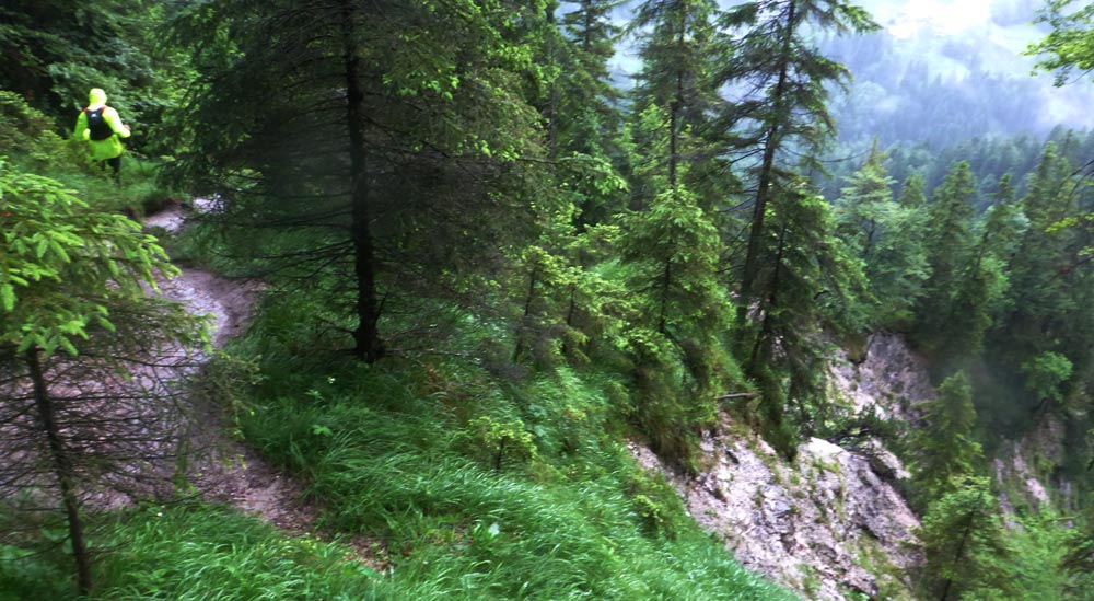 Downhill Kälbersteig