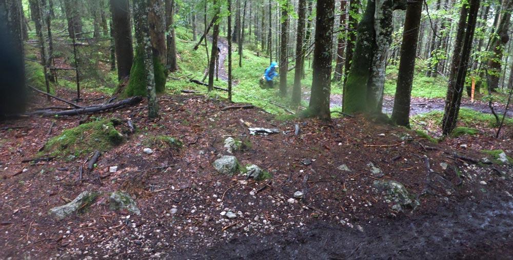 Matsch Uphill durch den Wald