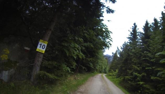 10 Kilometer Zielsprint