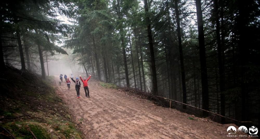 Es gibt auch ein paar Forstwege