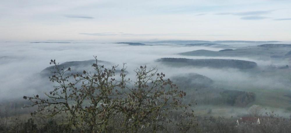 Morgenblick vom Hohenhewen