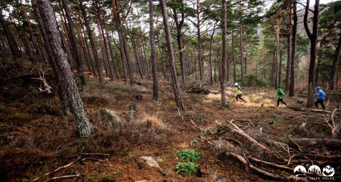 ALLE Bilder vom TrailMagazin Revierguide Pfalz (Süd)