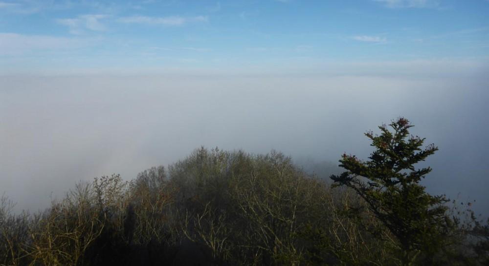 Hohenhewen - über den Wolken