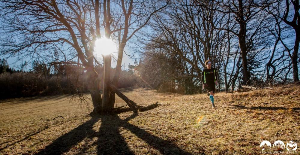 In der Nachmittags-Sonne am Albtrauf entlang