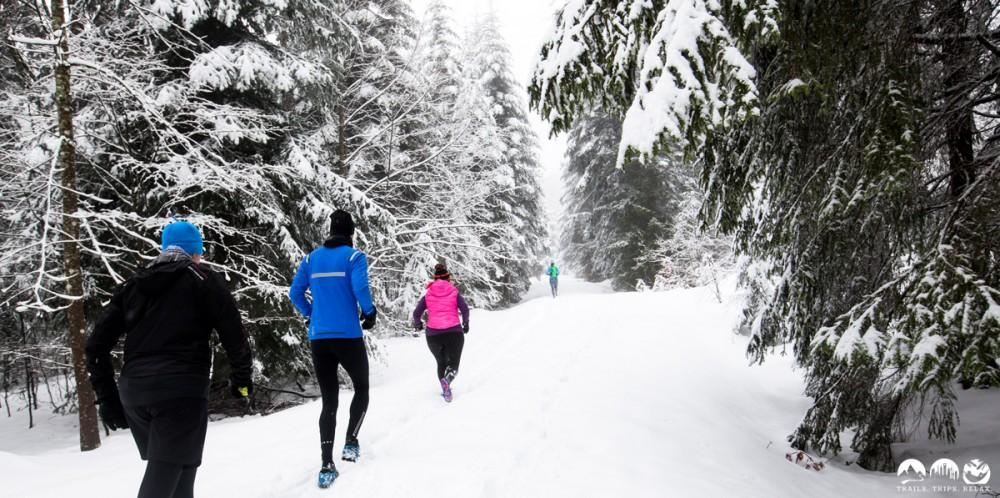 Den Trail erkennt man vor lauter Schnee nicht