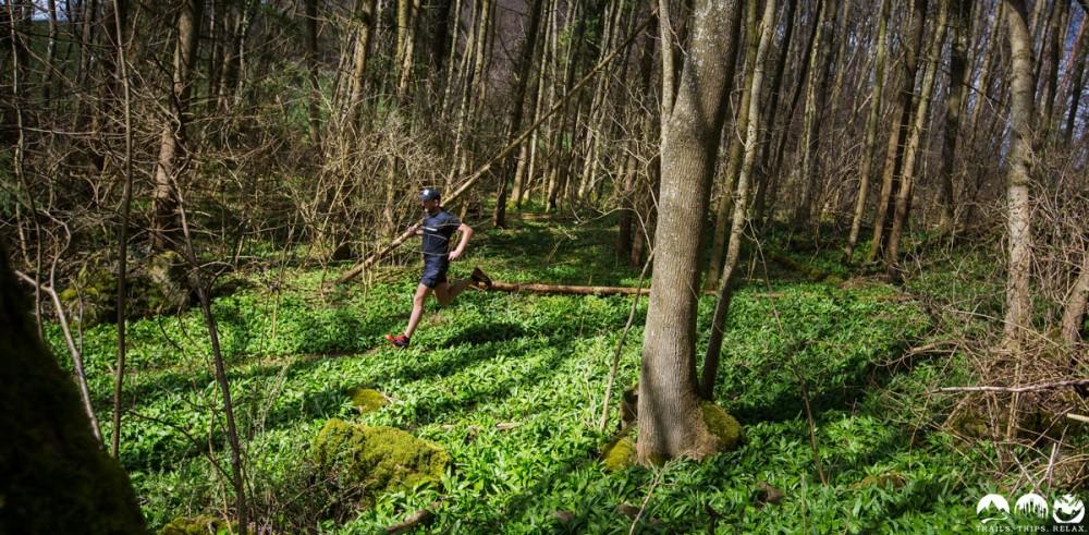 Laufend auf dem grünen Teppich