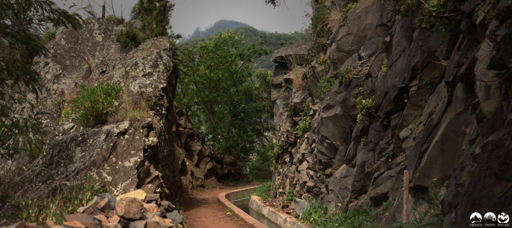Auf der Levada Canical entlang