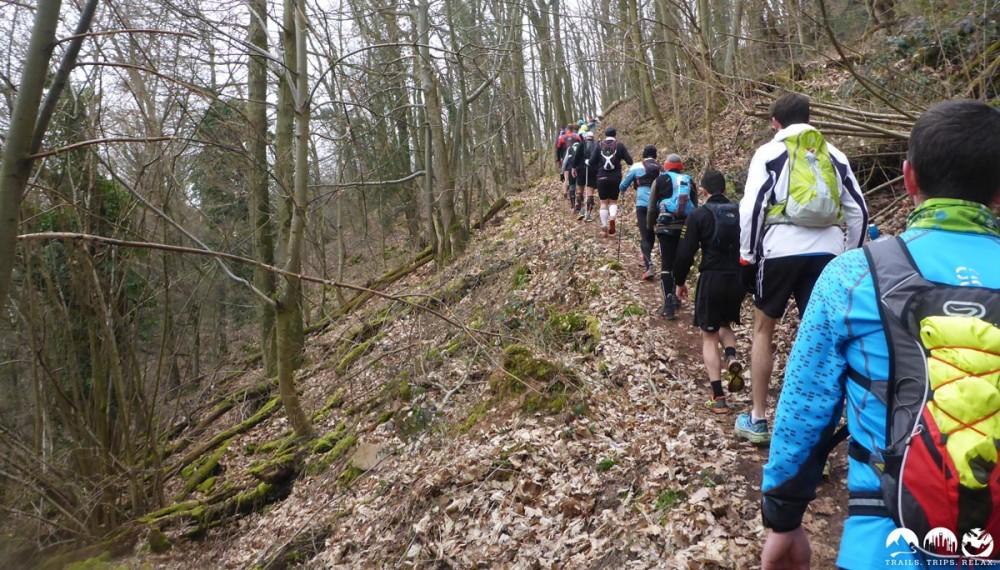 Uphill im Wald