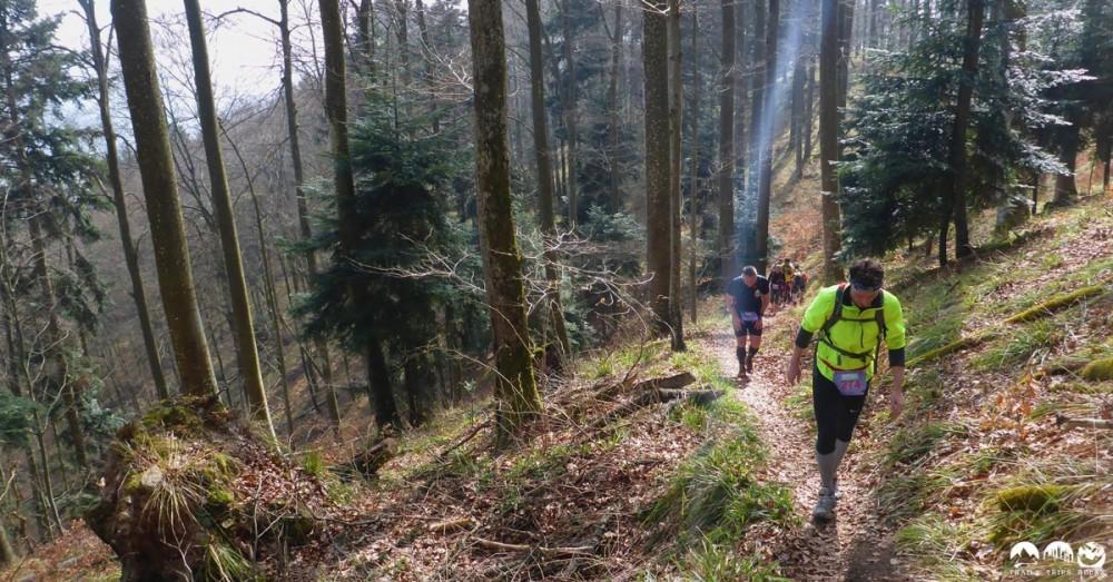 Der lange Anstieg im Wald