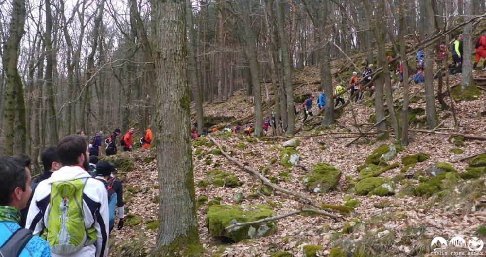 Ein kleiner Stau beim Uphill im Wald