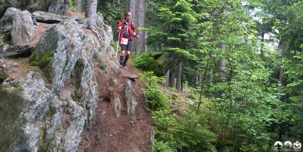 Der Holy Trail - quer durch den Wald