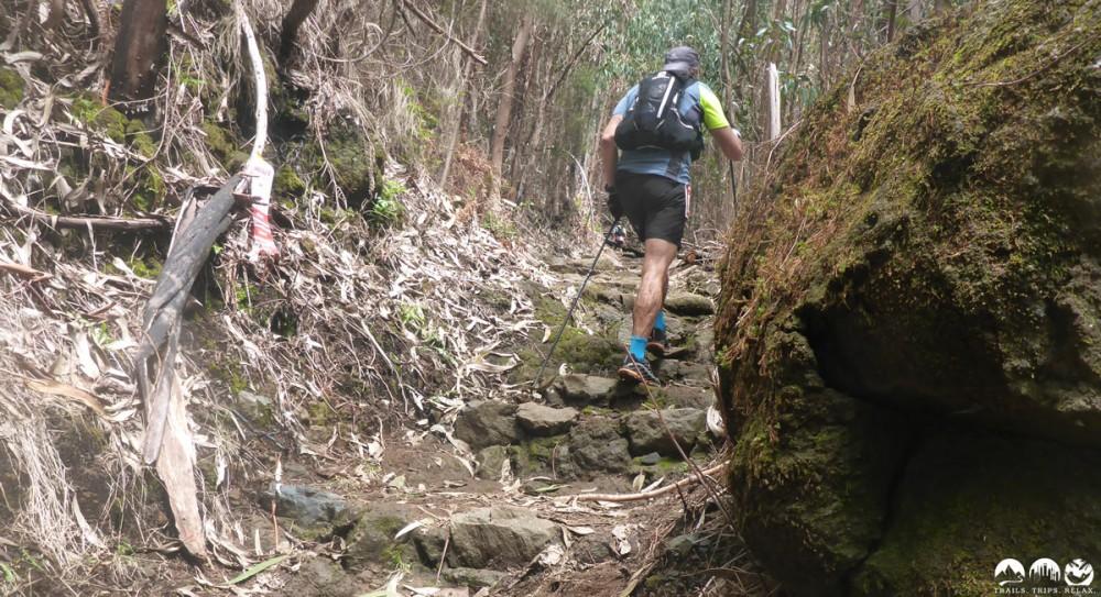 Uphill zum Pico Ruivo