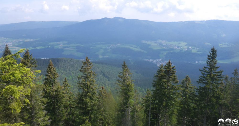 Blick zum Schluß-Downhill vom Osser Riesen