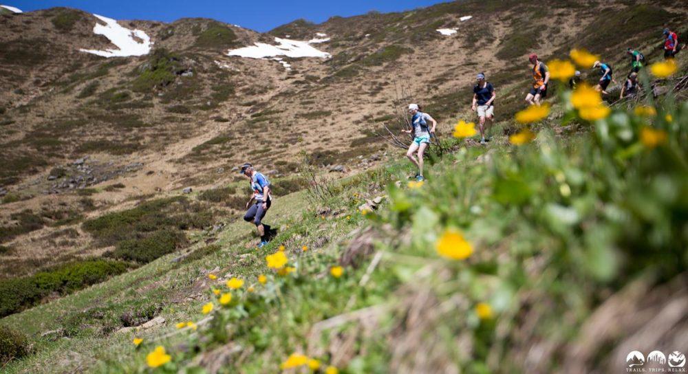 Downhill von der Ochsenhofer Scharte