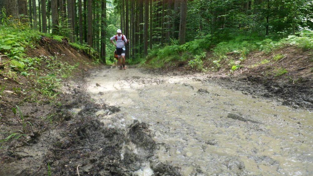 Matschiger Anstieg im Wald beim Schloß Ellmau