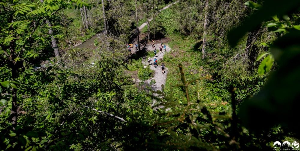 Durch den Wald am Schwarzwasserbach