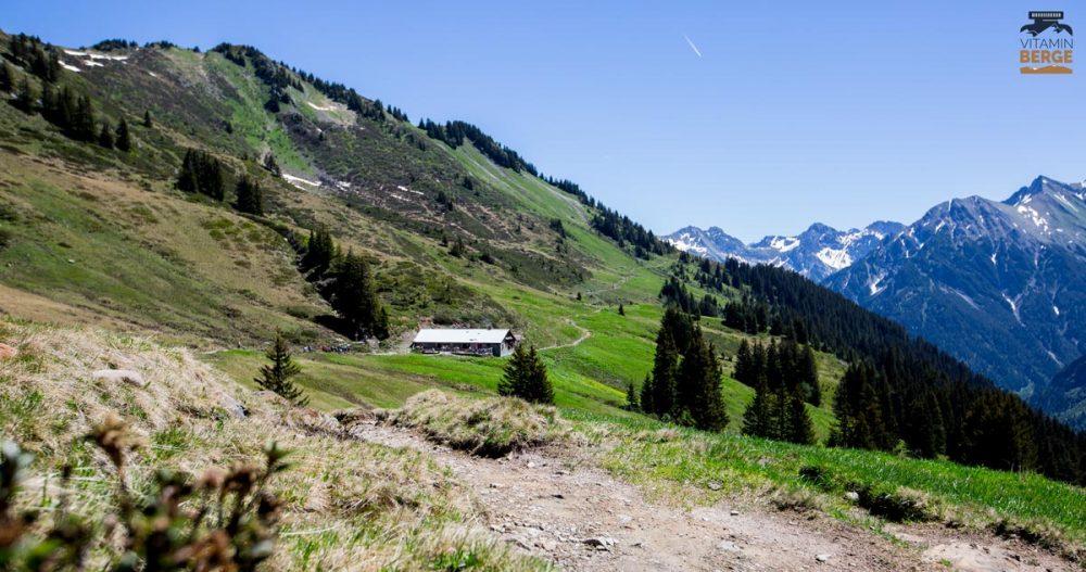 Trail nahe der Stierhofalpe kuru vor dem Aufstieg zum Grünhorn