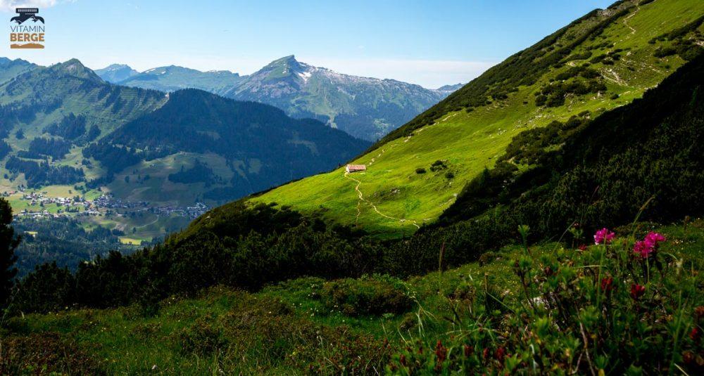 Wannenalpe auf dem Trail zur Alpe Kuhgehren. Im Hintergrund Walmendinger Horn, Hoher Ifen und Gottesacker