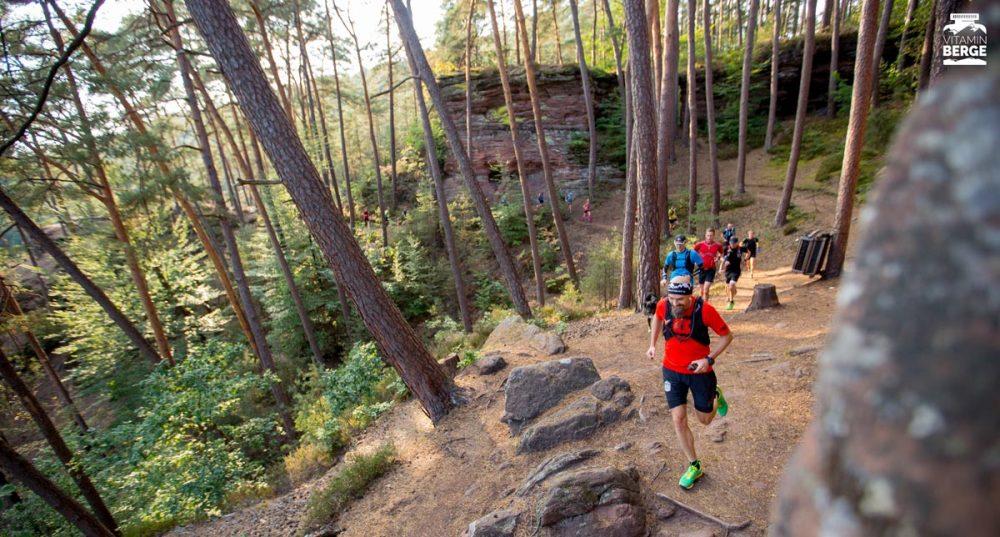 Trailrunning entlang der Felsen im Dahner Felsenland