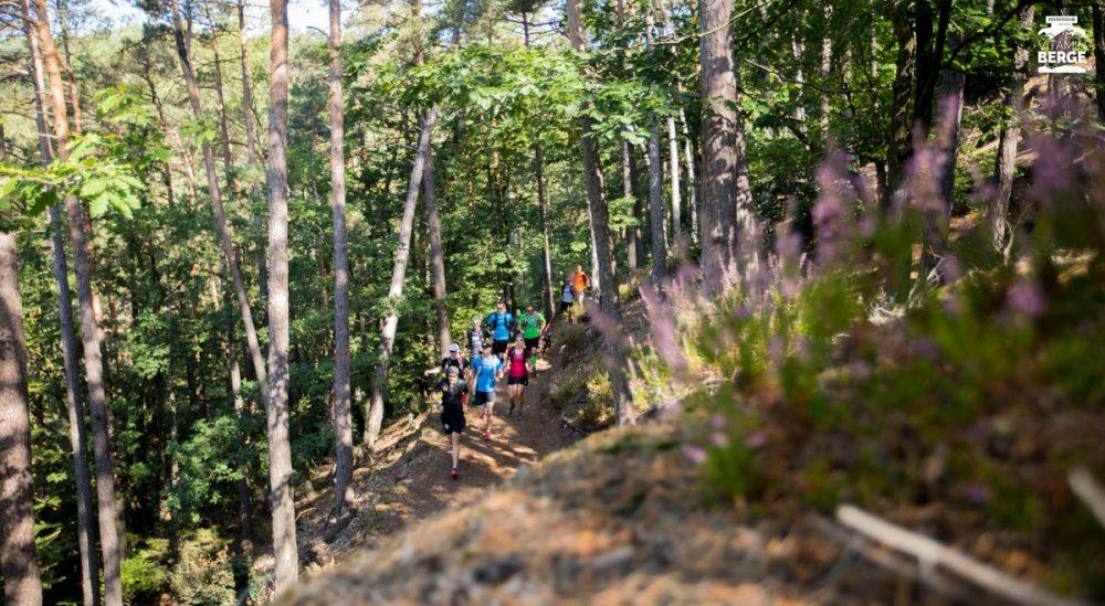Auf den Trails durch den Pfälzer Wald und das Dahner Felsenland.