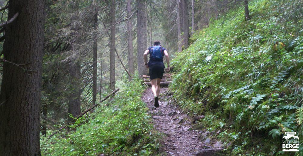 Durch den Wald auf steinig-wurzligen Trails
