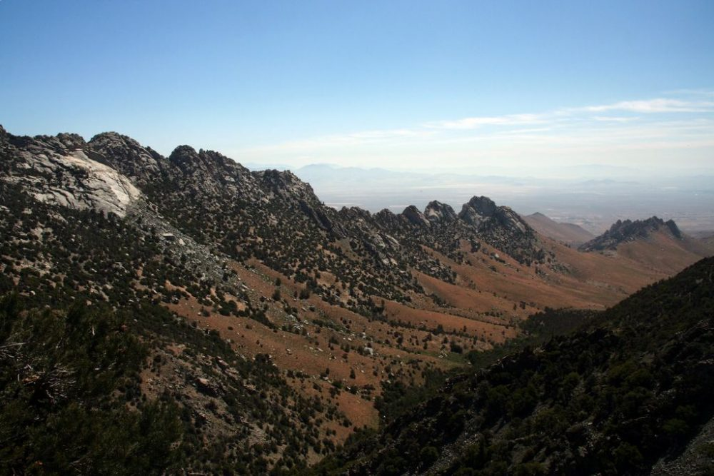 Ausblick vom Walker Pass