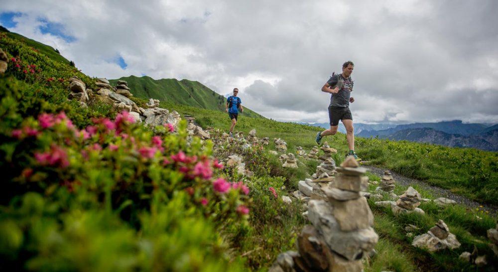 Trails vorbei an Alpenrosen und Steinmännchen.