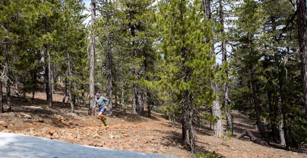 Matthias sprintet durch den Wald.