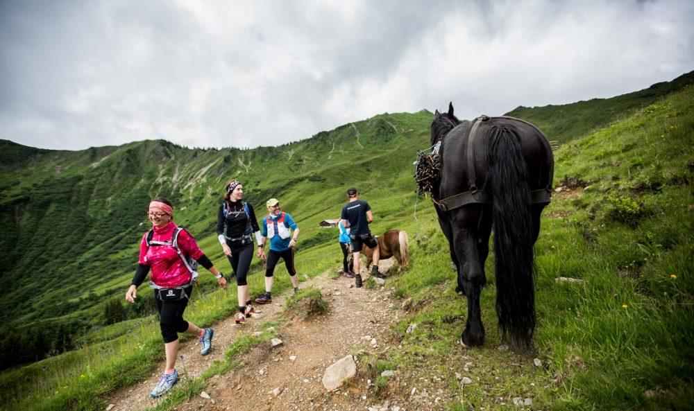 Pferd trifft Läufer.