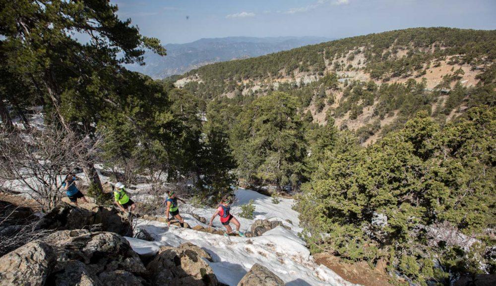 Weit oben auf dem Trail am Mt. Olympus
