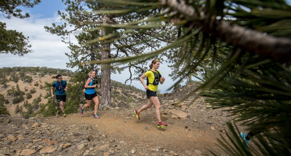 Trailrunning mit Timo, Christine und Alexandra