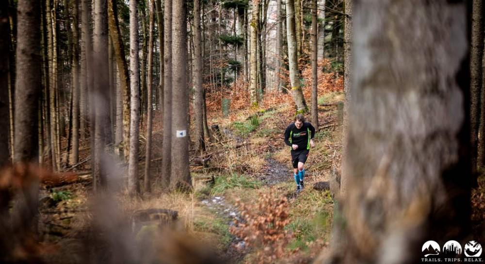 Durch den Wald, das zweite Mal